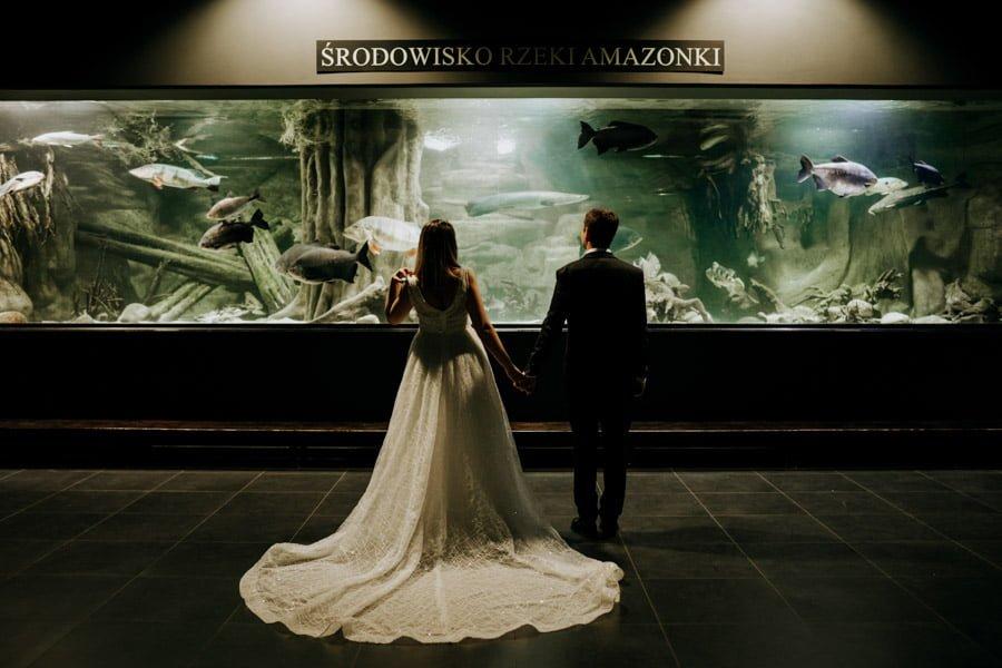 Najweselszy ślub roku - Fotografia Ślubna Częstochowa - Restauracja Kmicic 160